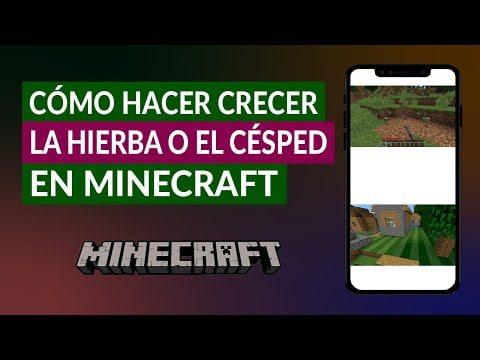C & oacute; how to grow the grass or C & eacute; SPED in Minecraft -Tips and Tricks