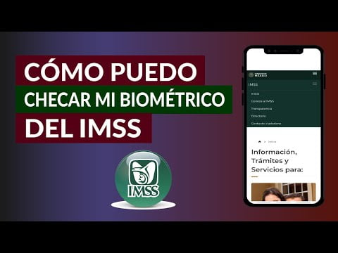 How I Can Check My Biometric Easily Imss