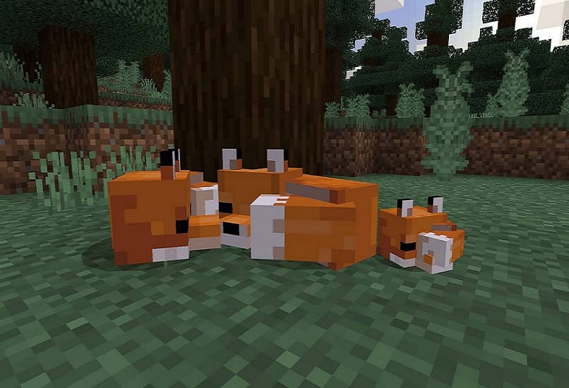 minecraft red foxes
