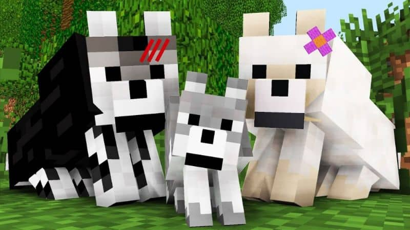 How to Name Animals and Pets in Minecraft
