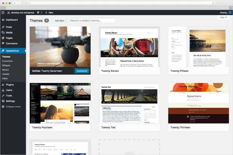 WordPress initial screen showing themes to choose from