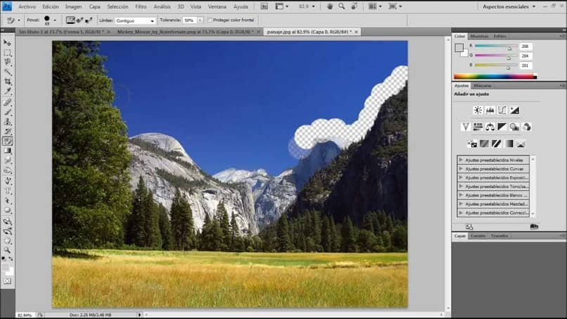 Undoing The Last Action With The Eraser Tool And Brush In Corel Photo Paint
