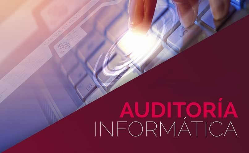 What are the Procedures and Techniques for Auditing Software or Computer Systems?