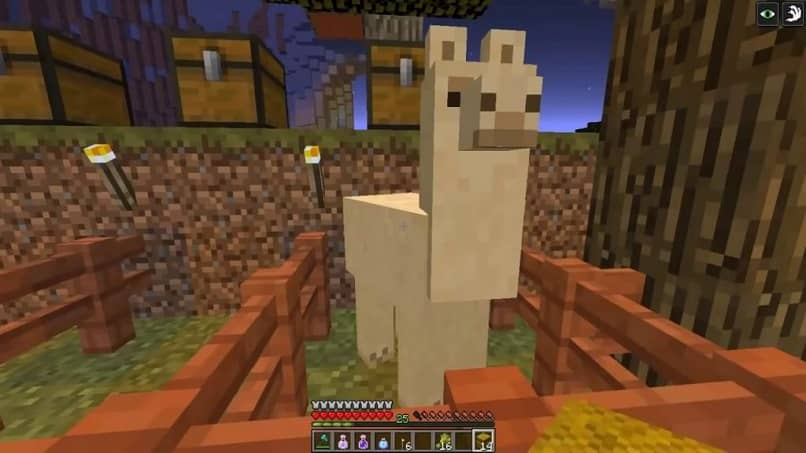 What do Llamas, Sheep, Turtles, Cows, Pigs, Dolphins, Polar Bears and Other Animals Eat in Minecraft?  (Example)