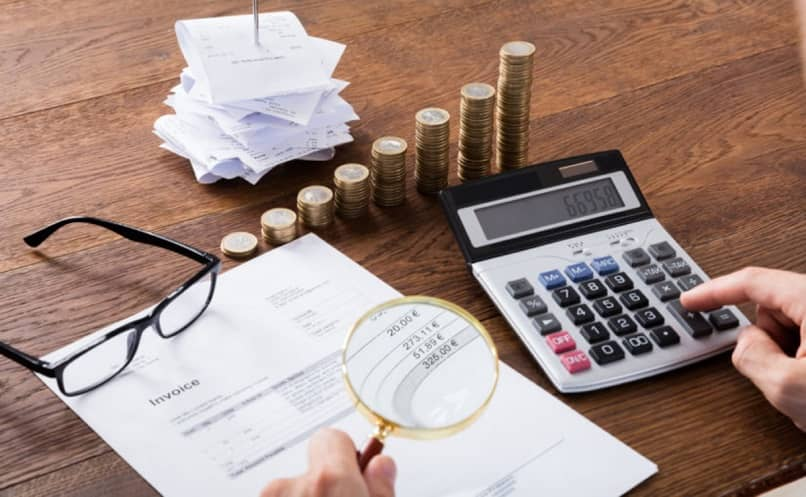 What does the '' Tax Multiplier '' and the '' Expenditure Multiplier '' consist of?
