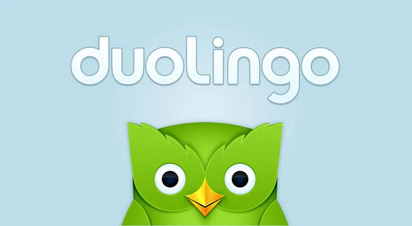 What is and how to use Duolingo?  How Duolingo Courses Work