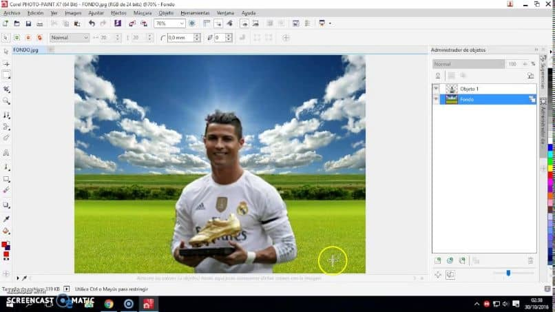 Using Tools To Cut And Assemble A Picture Of Corel Photo Paint