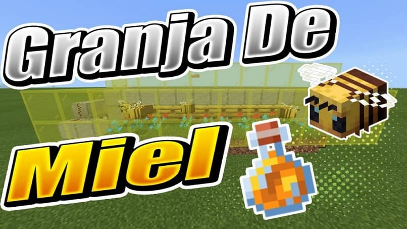 Creating a bee farm to generate honey in Minecraft