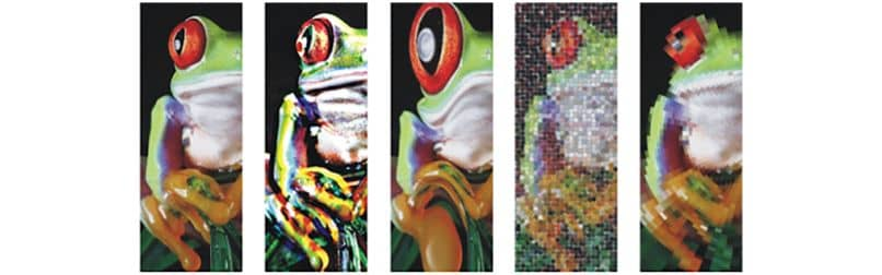 How To Apply Special Effects To Bitmap Images With Corel Draw