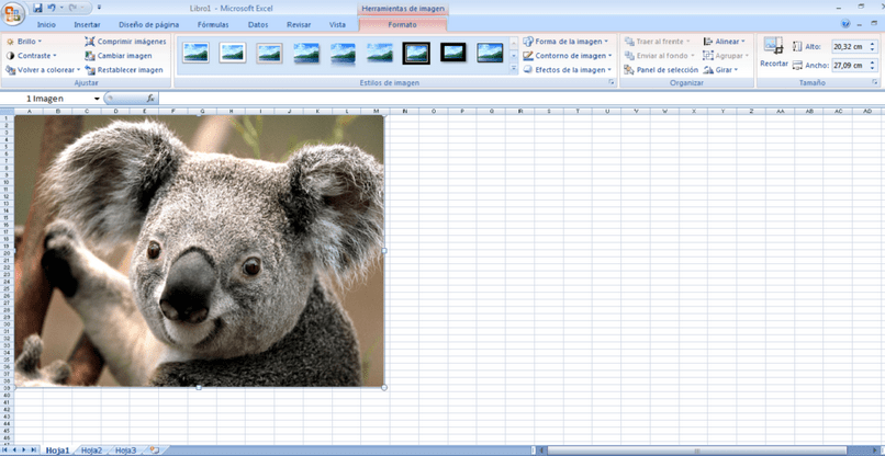 Inserting An Image Into Excel In A Cell Or Formula