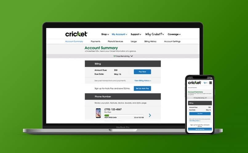 Entering an account number to my account Cricket step