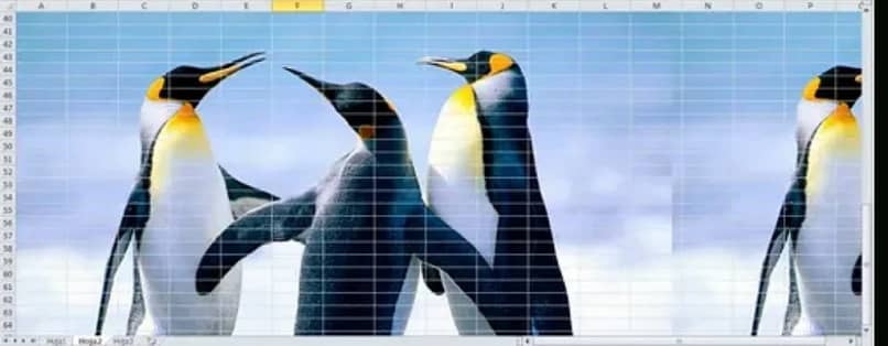 image of penguins as background of a sheet in excel