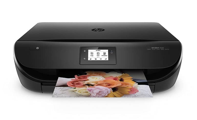 print picture flowers