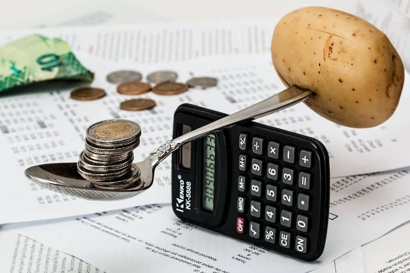 What is the Importance of Organizing the Reference Budget in a Project?