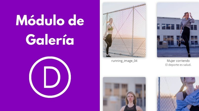 How to Make or Create a Gallery Module with Divi for WordPress