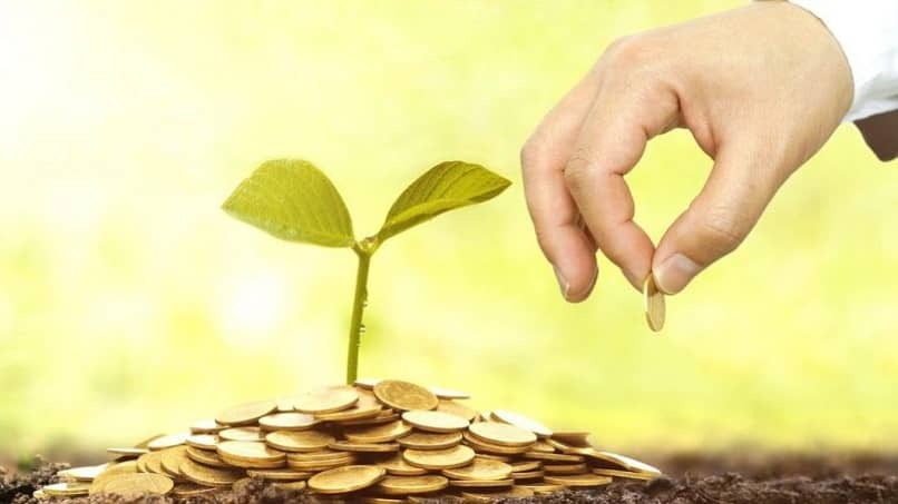 person companies give money grow plant environment