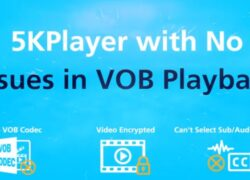How To Play Or Convert Video_ts .Vob Files Or Dvd In Windows 10