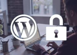 How to Limit the Amount of Login Attempts in Wordpress (Example)