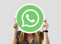 How to Read and Reply to Messages on WhatsApp without Appearing Online on Android or iPhone?  (Example)