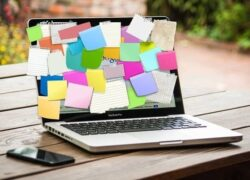 What are the Best Apps to Do and Organize Homework or Class Schedules?