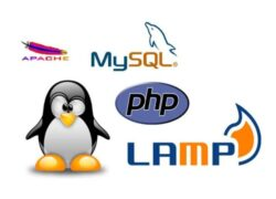How to Install Apache2 - PHP - Mysql and Phpmyadmin on Ubuntu - Quick and Easy