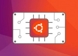 How to Install the FF Multi Converter File Converter on Ubuntu