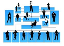 What are the Types and Roles of Leadership and Organizational Structure in Companies?