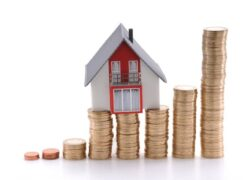 How to Apply for a Loan Assigned with Collateral Guarantee - Know all the Information