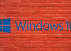 What are the Latest Windows 10 Updates and How to Download Them Manually?