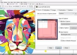 How to Crop, Divide, and Erase Objects from an Image Using Corel DRAW