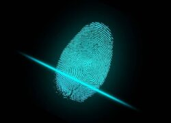 How to Register or Add a Fingerprint on an Android Mobile - Quick and Easy
