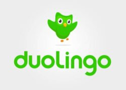 How Can I Easily Restart or Change the Language of my Duolingo Course?  (Example)