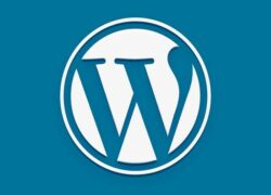 How to Add Domain to Cpanel and Install Wordpress in Banahosting?  (Example)