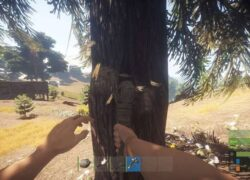 What is '' Rust Staging Branch '' in the Video Game Rust?  - Solution