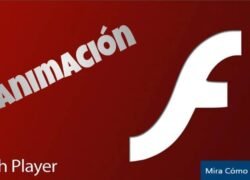 What is and what is Flash Animation for and what types are there?