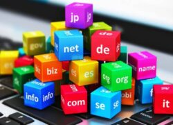 What is it, what is it for and How Many Internet Domain Types Are There?