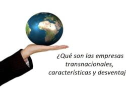 What are Transnational Companies, Characteristics and Disadvantages?  Examples
