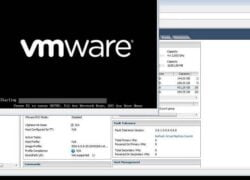 How to Exit Console Mode on a VMWare Virtual Machine