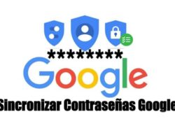 How to Synchronize my Passwords with my Google Account?  (Examples) |  See How It's Done