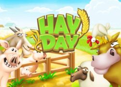 What are the scrolls for on Hay Day?  Materials and Expansion Permits