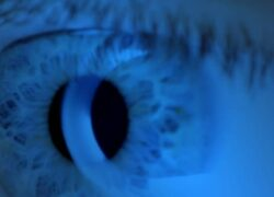 What Does the Blue Light Emitting from the Screen of a Device Mean?
