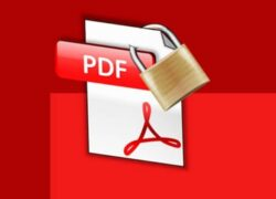 How to Extract Images and Text from a Protected PDF Document Online?  (Example)
