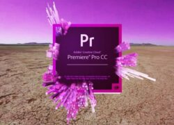 How to Subtitle a Video with Adobe Premiere Pro Easily?  (Example)