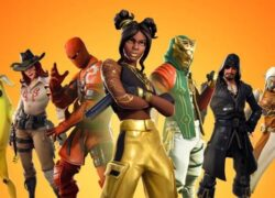 How can I have all the skins in Fortnite?