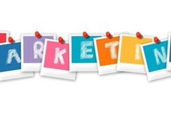 What is, Characteristics and Importance of Service Marketing in Companies?