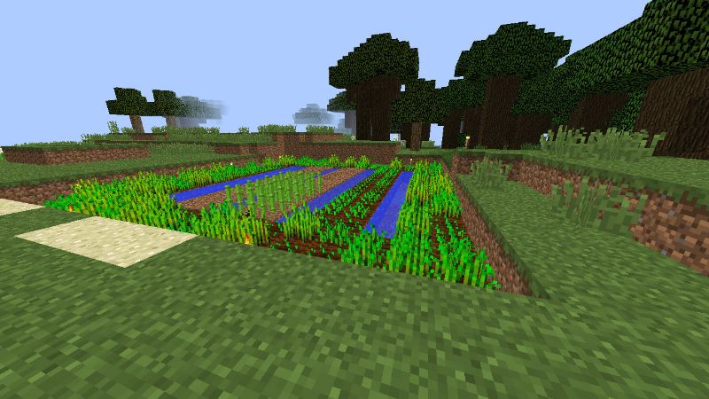 orchard crops