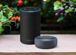 What Inquiries or Questions Can I Ask Alexa on Amazon Echo?  (Example)