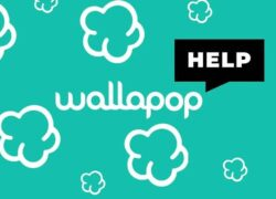 How to Contact Wallapop?  - Solve your Problems on the Customer Service Phone (Example)
