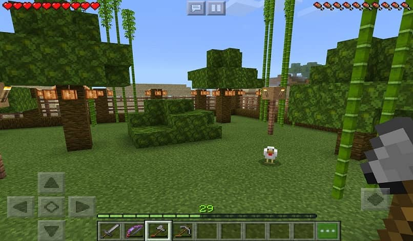 minecraft forest and bamboo
