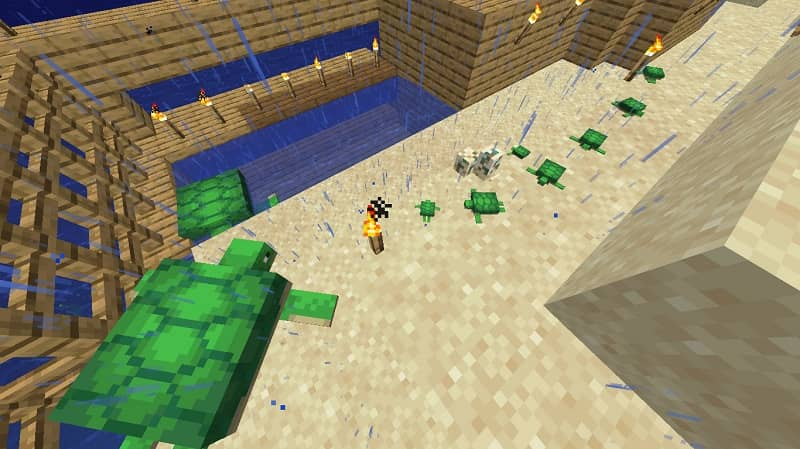 Make them open the turtle eggs in Minecraft